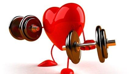 Prendre soin de son cœur quand on est sportif